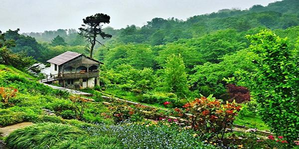 باغ گیاهشناسی باتومی