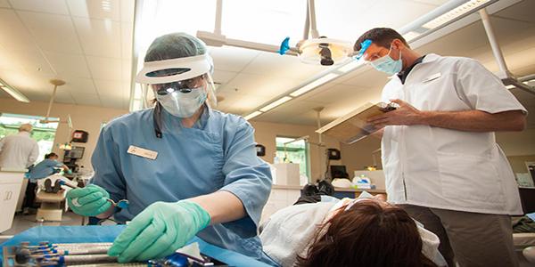 تخصص های رشته دندانپزشکی در کانادا